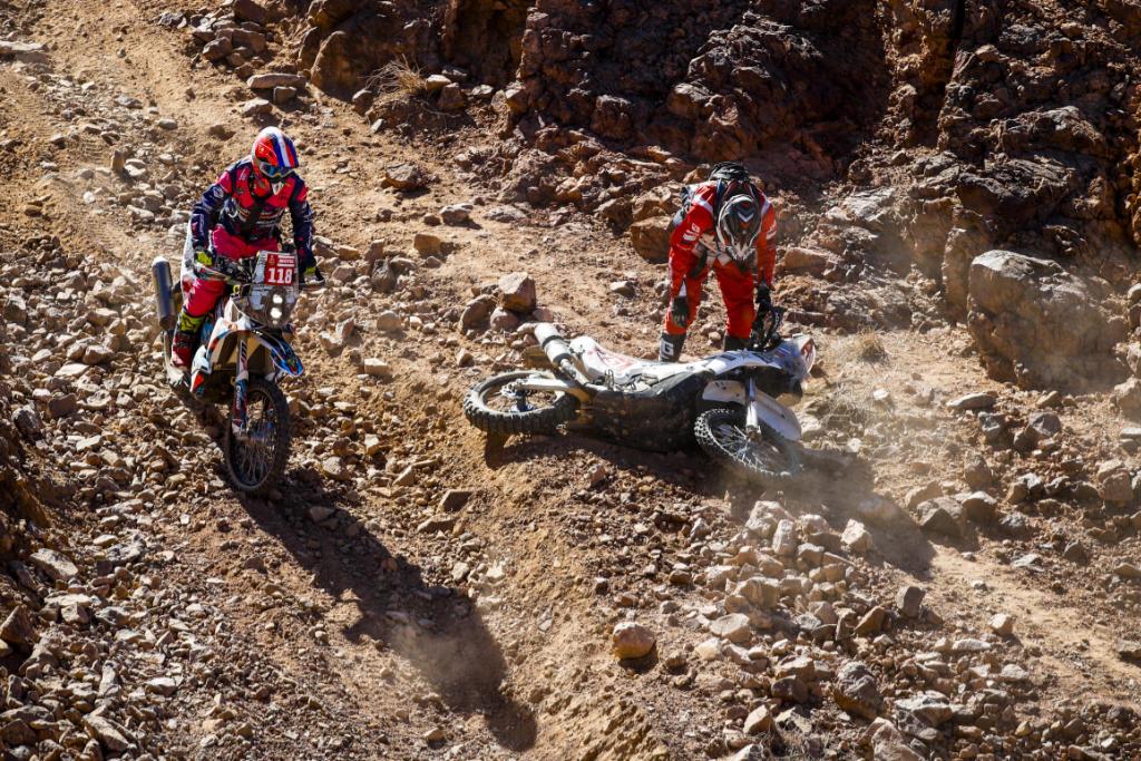 Alexandre Bispo & Eric Martinez, Dakar 2020